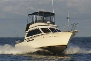 Great Lakes Lake Erie Fishing Charters